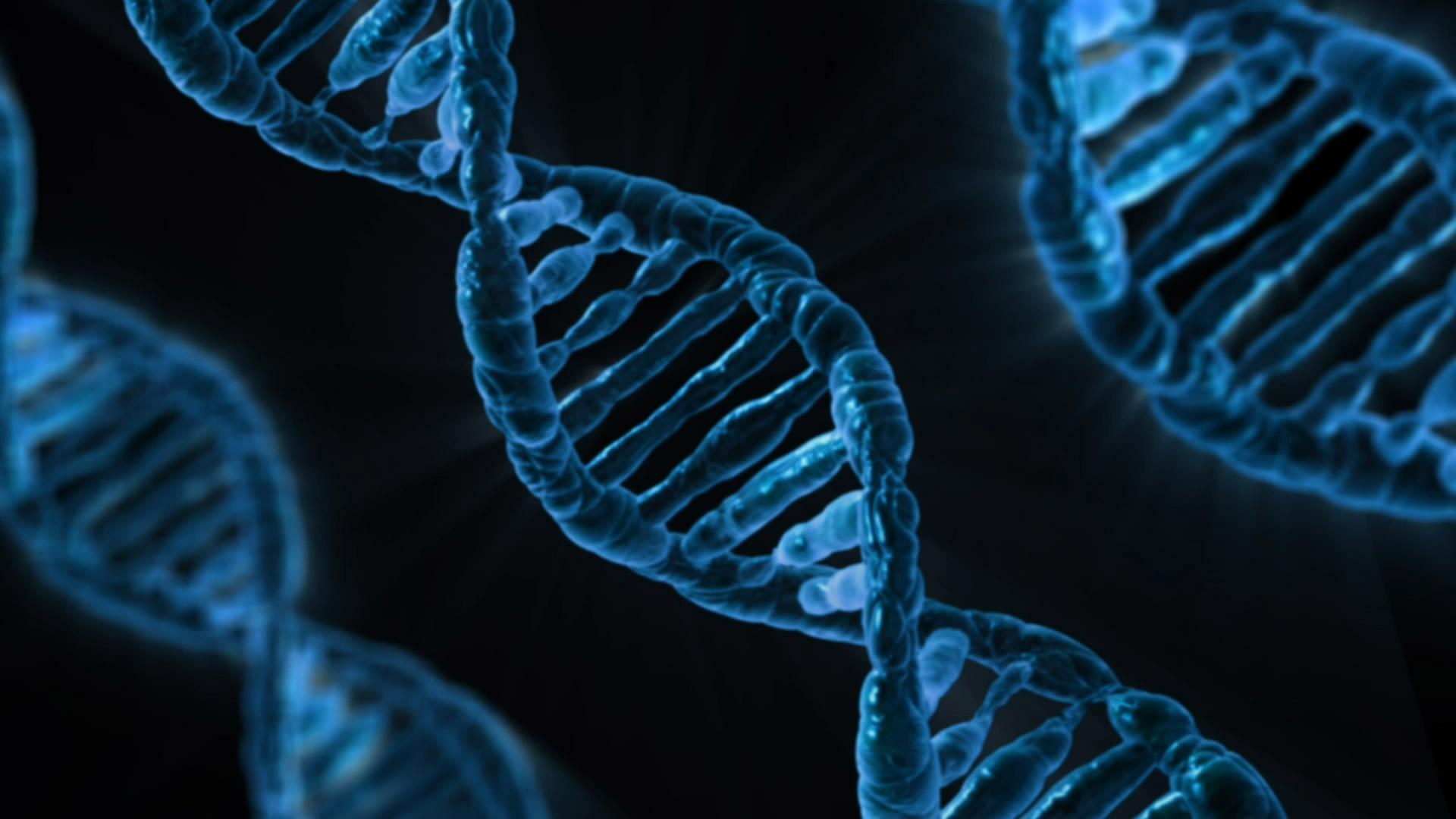 Genome Poised.jpg