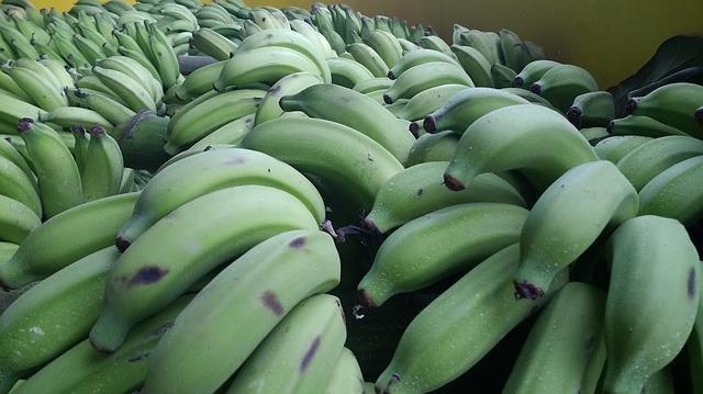 Green Banana.jpg