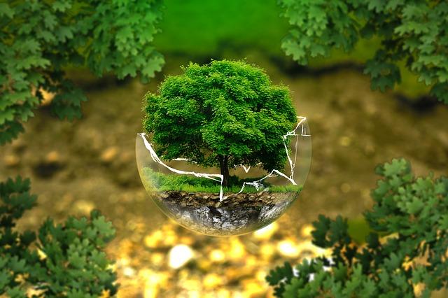 Green Earth.jpg