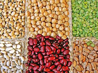 Legumes-CHM054C.jpg