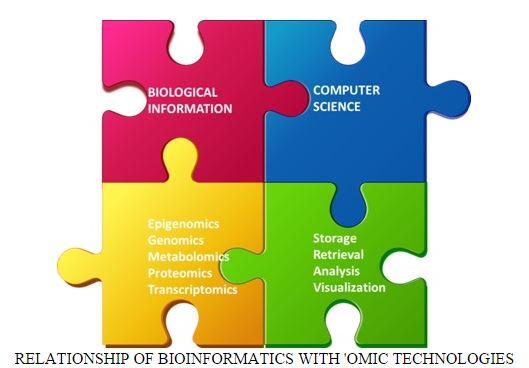 Bioinformatics Efforts.jpg