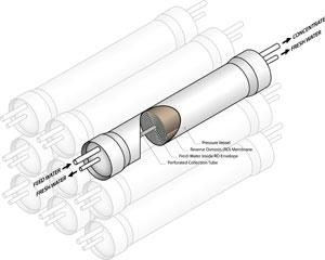 membranes.jpg